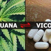 vicodin and marijuana