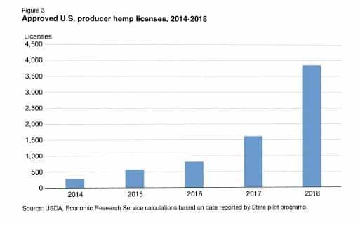 hemp growth stats